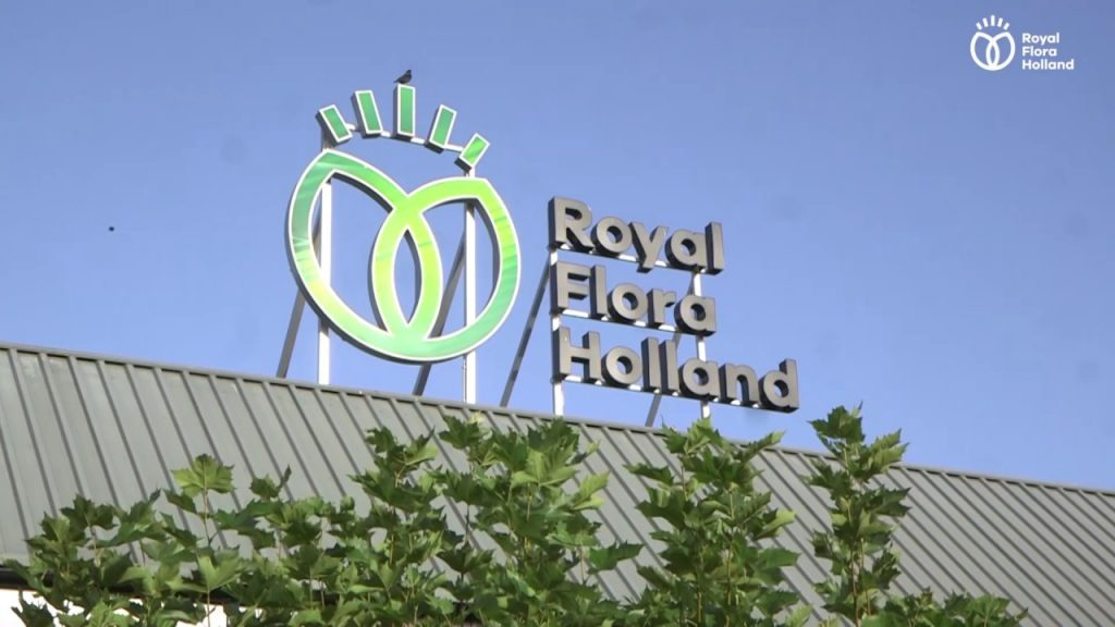 RoyalFloraHolland